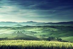 Tidig vårmorgon i Tuscany, Italien Arkivbilder