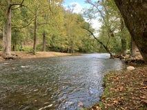 Tidiga Autumn Creek 1 - 10 2018 royaltyfri bild