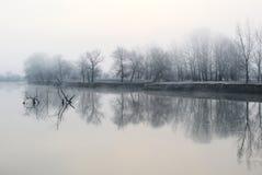 Tidigare frostig morgon på en lugna flod med frost-täckte träd royaltyfri fotografi