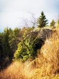 Tidigt Spring Hill landskap i den Franconian schweizaren Arkivbild