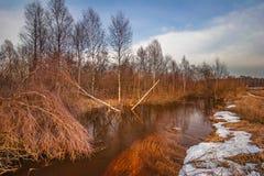Tidigt vårlandskap med floden Royaltyfri Bild