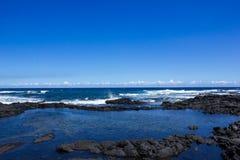 Tidvattenpöl på det Stillahavs- Arkivbilder