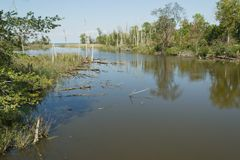 Tidvattens- damm Fotografering för Bildbyråer