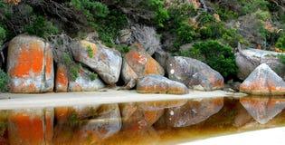 tidvattens- flod Royaltyfri Fotografi