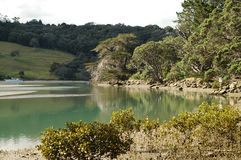 tidvattens- flod Arkivfoto