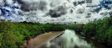 tidvattens- florida flod Royaltyfri Bild