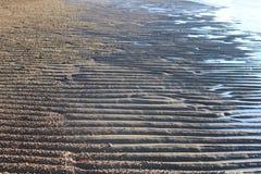 Tidvattens- lägenheter på punkt Samson Arkivbilder