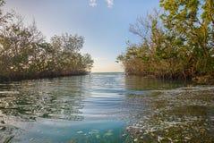 Tidvattens- liten vik på ottasoluppgång fotografering för bildbyråer