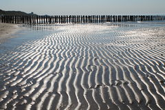 tidvattens- sand Arkivbilder