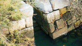 Tidvattenvatten maler fördärvar Arkivbild