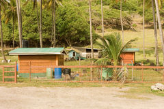 Tidy animal pens at a coconut plantation in the caribbean Stock Images