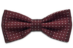 Tie. A red dotted bow-tie on white with clipping path Stock Images