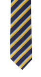 Tie a colorful striped. Stock Image