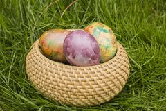 Tie-dyed Easter Eggs in the wicker basket. On the grass royalty free stock photo