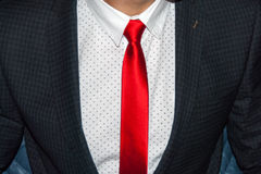 Tie. Executive dressed in business attire, red silk tie and grey wool suit Stock Images