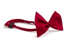 tie för bowkopieringsavstånd Royaltyfri Bild