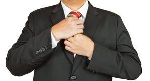 tie för dräkt för affärsman royaltyfria bilder