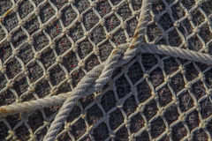 Tie on a fishing net Stock Image