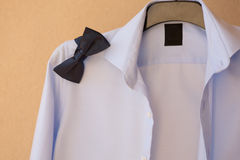 Tie of the groom Royalty Free Stock Image