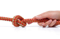 Tie a knot. Royalty Free Stock Photos