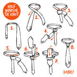 Tie Knot Sketch Stock Photos
