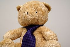 Tie on teddy bear  Royalty Free Stock Image