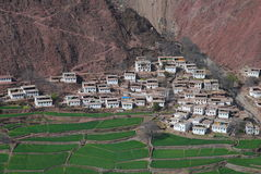 Tiebtan dwellings. A small  village at  the  foot  of  the  mountain in Markham,Chamdo,Tibet Royalty Free Stock Photography