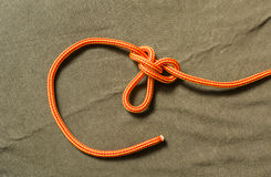 Tied buterfly knot. Stock Photos