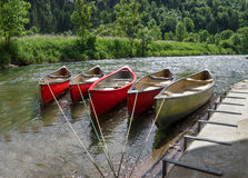 Tied canoes in a river Stock Images