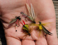 Tied flies for fly fishing bait. Bright colorful hand crafted tied flies to be used for fly fishing. Recreational sporting activity of fly fishing, bait, lure stock photography