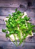 Tied fresh parsley Stock Photos
