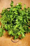 Tied fresh parsley Royalty Free Stock Photography