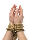 Tied hands isolated Stock Photography