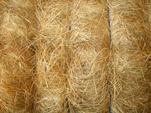 Tied hay bale. Round hay bale tied with baling twine Royalty Free Stock Images