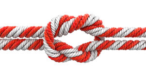 Tied knot Royalty Free Stock Image