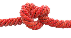 Tied knot Stock Image