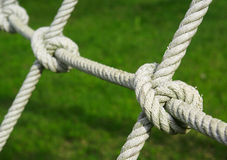 Tied knot on rope. In the Garden Royalty Free Stock Image