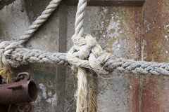 Tied knot rope, close up Royalty Free Stock Photo
