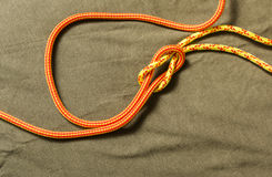 Tied reef knot. Stock Image