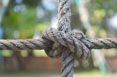 Tied rope Royalty Free Stock Photography
