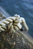 Tied rope Royalty Free Stock Photo