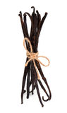 Tied standing vanilla beans Stock Photo