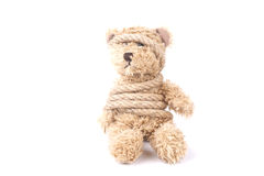 Tied teddy bear Stock Photography