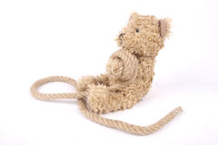 Tied teddy bear Stock Photo