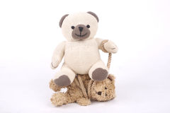 Tied teddy bear Royalty Free Stock Photos