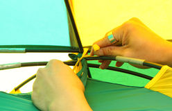 Tied the tent rope with tent pole Stock Images