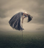Tied to the earth. Royalty Free Stock Images