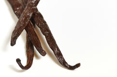 Tied vanilla beans Stock Photo