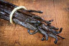 Tied vanilla pods Stock Images