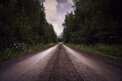 Tiefe Perspektive der Schotterstraße durch Wald lizenzfreie stockfotos